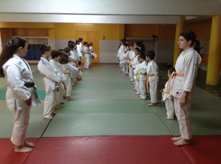 Judo Muñiz